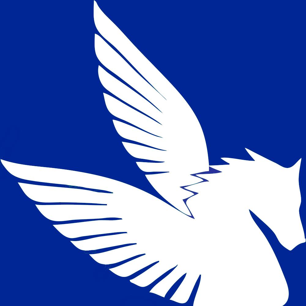Pegasus Airport Limousine Company Logo
